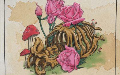 Pink Roses and Mushrooms
